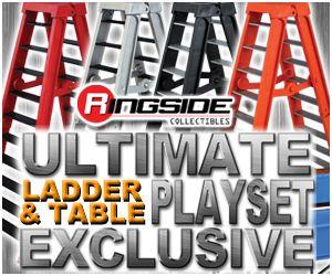 http://www.ringsidecollectibles.com/Merchant2/graphics/00000001/rex_tlc_logo_pwinsider.jpg