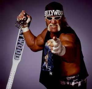 nWo Hollywood Hogan!