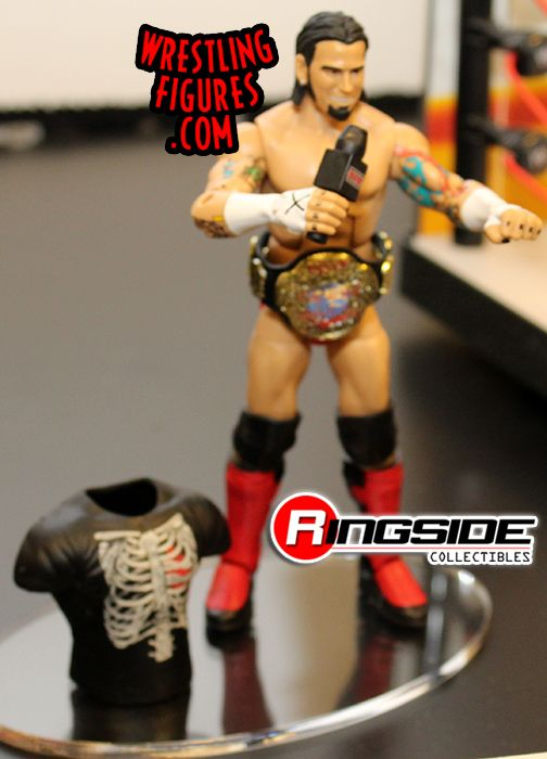 Mattel WWE Ringside Collectibles Exclusive ECW CM Punk!
