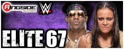 Mattel WWE Elite Series 67!