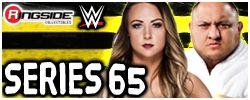 Mattel WWE Series 65!