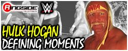 Mattel WWE Defining Moments Hulk Hogan Exclusive!