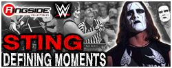 Sting - Mattel WWE Defining Moments!