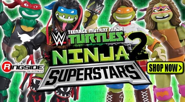 http://www.ringsidecollectibles.com/mm5/graphics/00000001/turtles2_logo_highlight.jpg