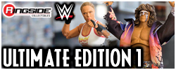 Mattel WWE Ultimaete Edition Series 1!